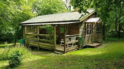 Secluded Wood Cabin in South West Wales in own half acre of private Woodland