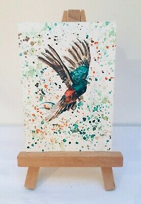 ACEO Tiny Bird, Original Miniature Watercolour Painting