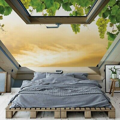 Vines Countryside Skylight Window View Photo Wall Mural Fleece EasyInstall Paper