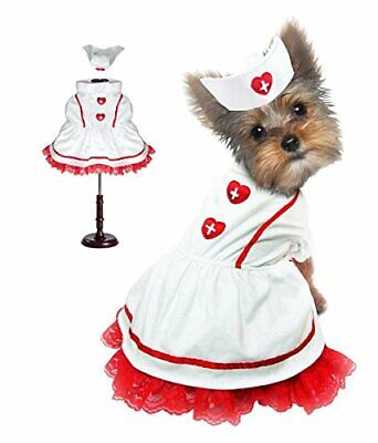 Dog Costume Sweet Heart Classic Nurse Outfit White Red Lace Dress & Hat