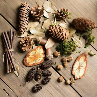 Artificial Flower Dried Berry Pine Cone Garden DIY Stage Party Home Decor DP