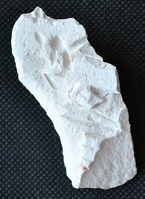 Authentic Ancient Egyptian Limestone Fragment with Traces of Carved Hieroglyphs