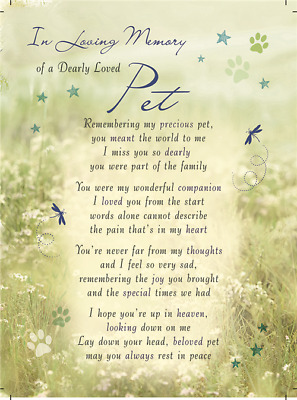 DEARLY LOVED PET Plastic/Waterproof/Grave/Memorial/Remembrance/Tribute Card