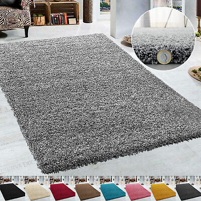 Large Shaggy Rugs Non Slip Thick 5cm High Pile Rug Mat Living Room Carpet Modern