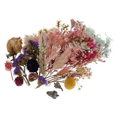 Various Real Press Dried Flowers Leaves For DIY Epoxy Resin Jewelry Making