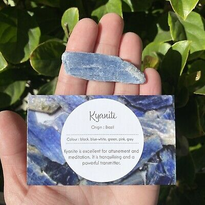 1 x Blue Kyanite Blade from Brazil - Natural Large Size 50-70mm Crystal Blade