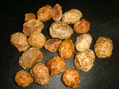 Mexican Red Hots Thunderegg / Berrendo Agates Rough Lot   1 +  Pound