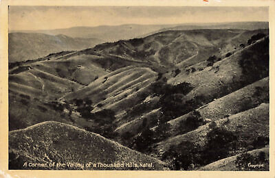 R197104 A Corner of the Valley of a Thousand Hills. Natal. The Newman Art Publis