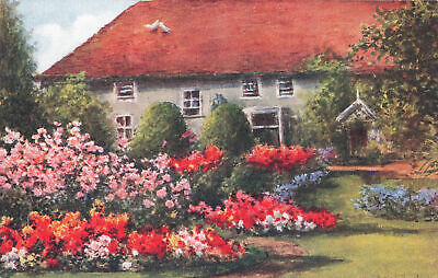 R203799 Old Mill House. Wannock. Roses and Begonias. 3261. Salmon