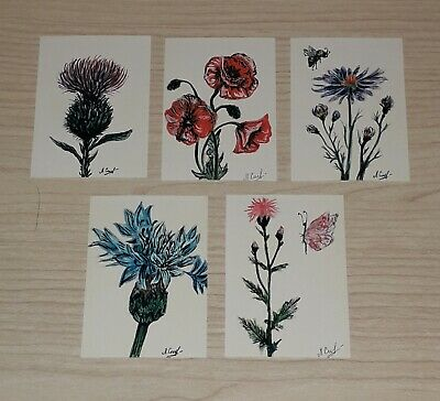 5x ACEO floral plant flower 2,5'x3,5'print from Original Watercolor paint signed