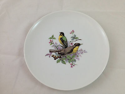 """Vintage Kaiser Birds 7"""" Plate Yellow Green Feathers VGC"""
