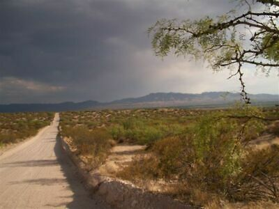60+ Acres Texas Land Double Access Roads! Drastic Price Reduction Sale! Bid Now!