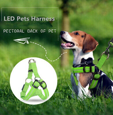 Comfort Control Dog Harness LED Pets Walking Accessory Collar USB Rechargeable