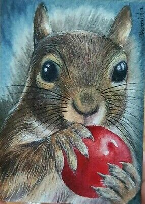 Original ACEO ATC Painting Art Card HBD Gift Nature Squirrel Portrait Cherry