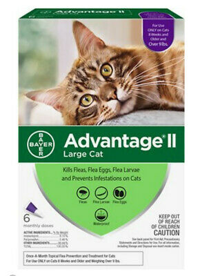 Bayer Advantage II for Large Cats Over 9 lbs, 6 Month Supply