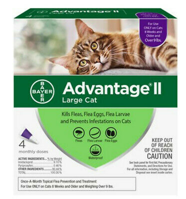 Bayer Advantage II for Large Cats Over 9 lbs, 4 Month Supply