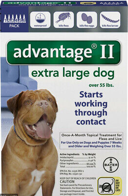 Bayer K9 Advantage II for Extra Large Dogs over 55 lbs - 6 Month Supply