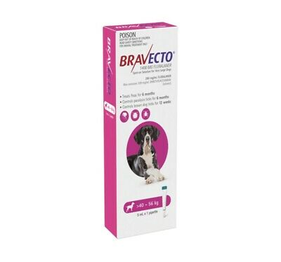 Bravecto Pink Spot On For Dogs 40-56 kg - 1 Dose Pack