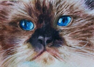 Original ACEO Watercolor Painting Art Card Cute Cat Kitten Brown Gift HBD