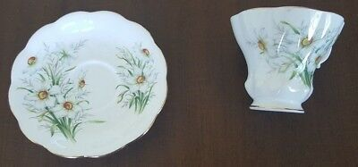 Royal Albert Friendship / Narcissus Tea Cup and Saucer made in England