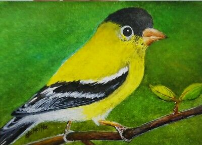 Original ACEO Painting Art HBD Card Gift Bird Nature Portrait Forest Yellow