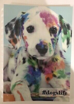 2020 diary Colourful Dog A5 WEEK TO ONE PAGE (SEE PICS)