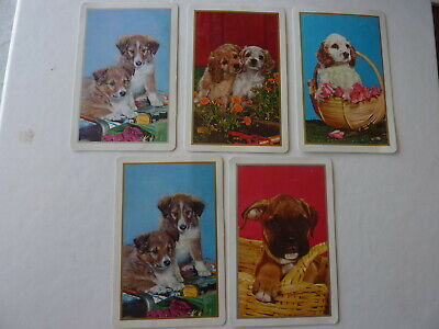 Gold Silver 1970's era Puppies Dogs Single GENUINE VINTAGE Playing Swap Cards AK