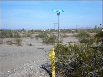 2 Adjoints Lots Az-Ca Border-Walk to Colorado River No Reserve