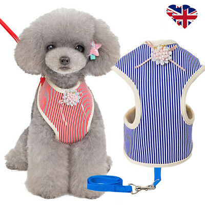 No Pull Small Dog Harness Leash Lead Pet Cat Striped Floral Soft Padded Vest UK