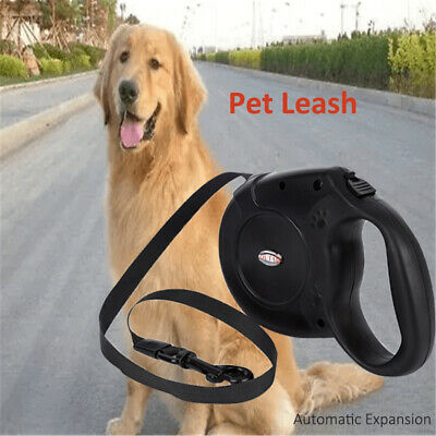 Retractable Dog Lead Flexi Locking Extending Leash Comfort Padded Large 5M B