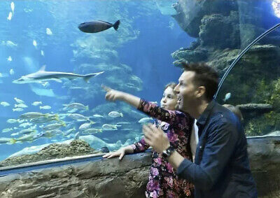 SEA LIFE CENTRE TICKETS CHOOSE A Date & Location LOOK Be Quick Dates Going Fast