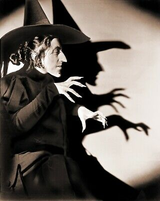 8x10 Wizard of Oz GLOSSY PHOTO photograph picture print image wicked witch