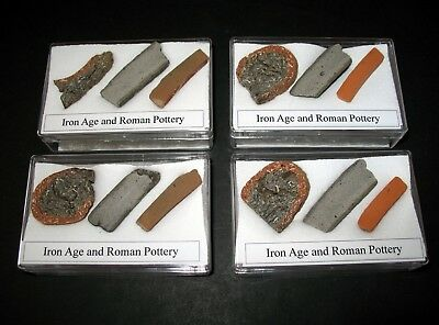 Roman & Iron Age pottery slices showing different fabric types in display case