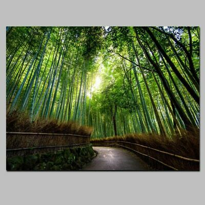 Modern Landscape Canvas Painting Bamboo Forest Mountain Paths HD Print Wall Art