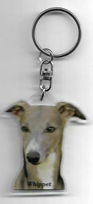 Whippet  Dog K.fobs / Porte Cles Chien