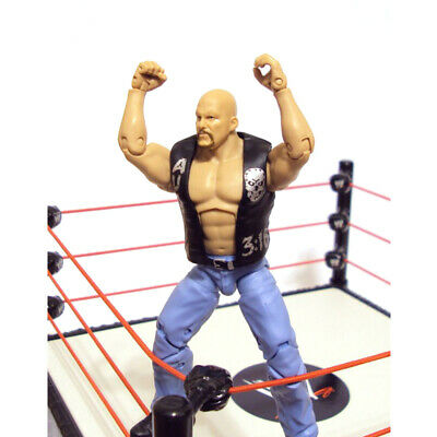 WWE Defining Moments Stone Cold Steve Austin Best Of Attitude Era Action Figure