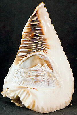 ANTIQUE Hand Carved Cameo Shell Lamp Shade Light Volcano Mount Vesuvius
