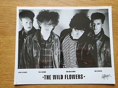 THE WILD FLOWERS 8x10 BLACK & WHITE Press Photo 90's ALT ROCK NEW WAVE BAND