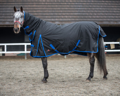 Heavyweight Winter Combo Turnout Horse Rug 350g Standard And Full Neck Black