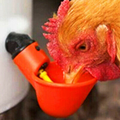 20pcs Automatic Chicken Drinker Cups Plastic Poultry Waterer Water Drinking 17
