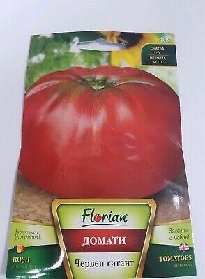 2 kg. Red Giant Beef Tomato BULGARIAN 150 SEEDS - big huge gigantic beefsteak