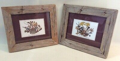 2 Vintage W.A Dry Flowers Pictures
