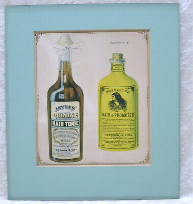 1897 QUACK MEDICINE Lithograph APOTHECARY Rare Original HAIR TONIC BEAUTY ADVERT