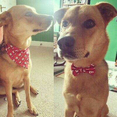 Father Christmas Dog Bandana Red Neck Scarf Neckerchief - with / without bowtie