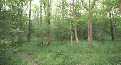 Land For Sale 40ft By 40ft  Prime Location Mole Valley Surrey Grab A Bargain