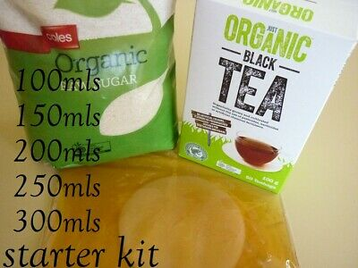 ORGANIC Kombucha SCOBY with Strong Starter Tea Easy Instructions Quick Delivery