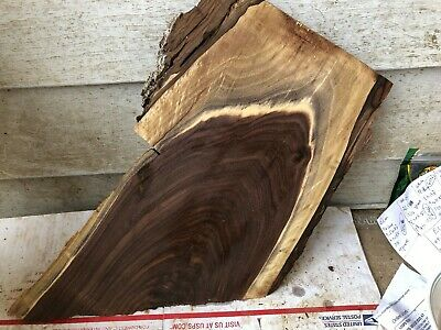 Small Beautiful Black walnut  slab