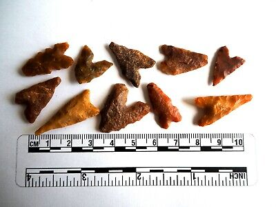 Neolithic Arrowheads x 10, Eiffel / Moroccan Points, Genuine - 4000BC  (2474)