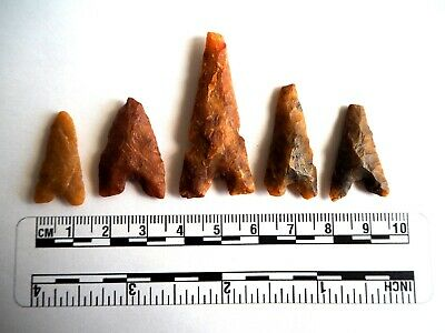 Neolithic Arrowheads x 5, Eiffel / Moroccan Points, Genuine - 4000BC  (2476)