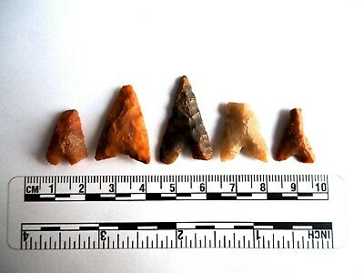 Neolithic Arrowheads x 5, Eiffel / Moroccan Points, Genuine - 4000BC  (2490)